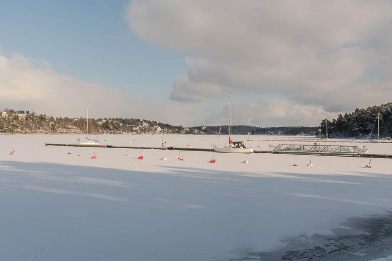 Winter-1157.jpg